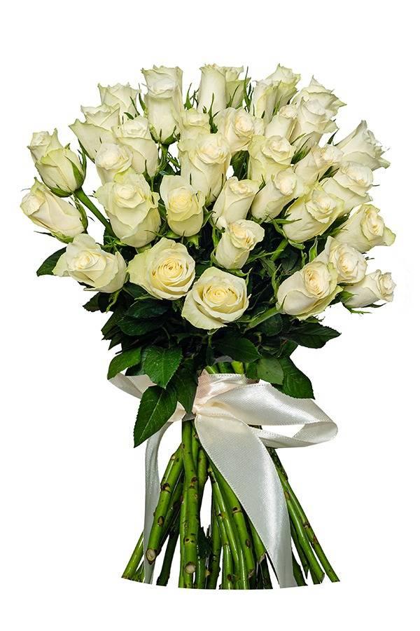 Роза белая 40 см.