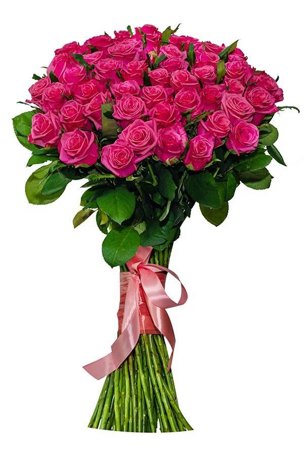Роза розовая 70 см.